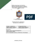 Informe de Pasantias YUSNELLY