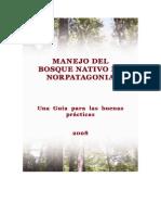 Buenas Practicas Forestales AndinoPatagonico