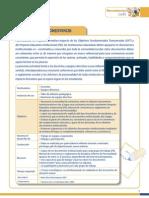 6 Taller Directivos Profes Convivencia Consistencia FINAL