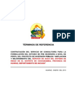 TDR WINCHUS.docx