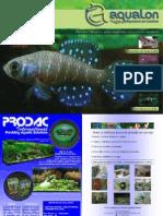 Aquarismo e Peixes Ornamentais