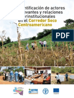 Identificación de Actores Relevantes y relaciones interistitucionales en el Corredor Seco Centroamericano