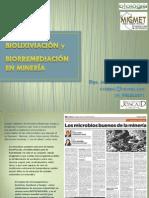 Biolixiviacion Biorremediacion Moq Tac 2014