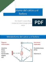 04_Metabolismo Del Calcio y El Fosforo