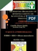 Palestra Ebramec Fibromialgia