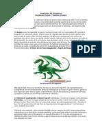 Anatomía de Dragones
