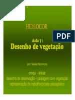 Desenho-Vegetacao.pdf
