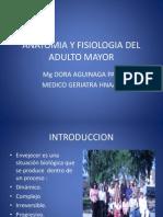 Anatomia y Fisiologia Del Adulto Mayor