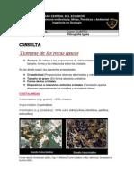 Consulta Texturas de las rocas ígneas.docx