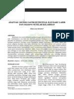 ruf-mei2006-2 (2).pdf