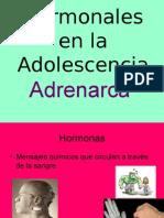 Cambios Hormonales en la Adolescencia