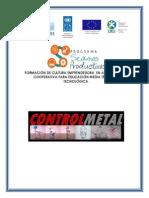 Plan de Negocios CONTROLMETAL_ in Damián Villacorta.1
