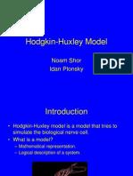 Hodgkin Huxley Model