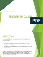 7. CAROLINA - Sensores de Caudal
