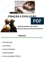 Criação e Evolução A6DDDd01