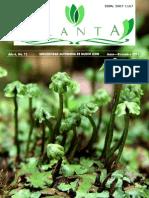 Planta No12