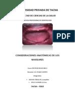 Anatomía Protética Del Maxilar Superior