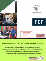 Directiva Sanitaria N 2011 GR LLGGR GS de Promsa.pdf[1]