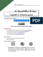 ManualOOWriter_Cap1 2014