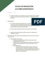 PROTOCOLO PRODUCCION FVH