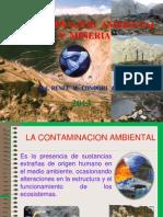 Contaminacion Ambiental y Minera Rpta 1