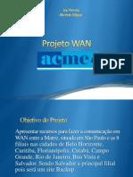 Apresentação PIM ACME