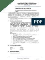 Estudio Fisico,Quimico y Bactereologico