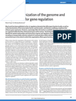 Nuclear organization of the genome and the potential for gene regulation