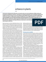 Epigenetic inheritance in plants