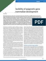 Stability and flexibility of epigenetic gene regulation in mammalian development