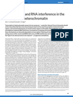 Transcription and RNA interference in the formation of heterochromatin