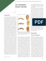 Malformaciones Congénitas Del Sistema Nervioso Central