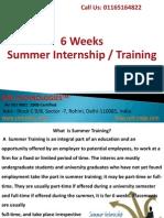 6 Weeks Summer Internship Training in Delhi