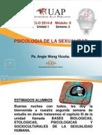 Ayuda 2-Fundamentos de La Ps Sexualidad