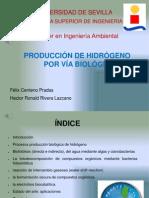 Bioenergia Trabajo