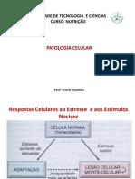 220746_AULA 02 Patologia Celular