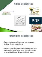 Conservacion Clase 2