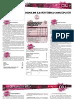 publicacion19b(200809)
