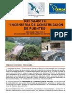 Ingenieria de Puentes 2014
