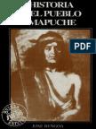 Bengoa, J. 1996 Historia Del Pueblo Mapuche
