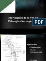 Intervencion Patologias Neurogenicas 2012