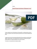 Remedios Naturales Para La Gastritis-libre de Gastritis