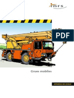 Grues Mobiles Safety