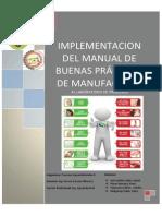 Implementacion Del Manual de Buenas Practicas