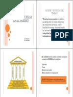 Higiene_y_Seguridad_Laboral.pdf