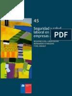 Cuadernos de Investigación Nº45 Seguridad y Salud Laboral en Pequeñas Empresas Agrícolas Regiones Del Libertador Bernardo O'Higgins y Del Maule