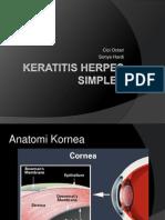 Keratitis Herpes Simplex-hsv