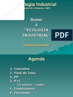 Ecologia Industrial_Compilado 2013.ppt