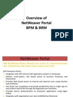Sap Portal Bpm and Brm