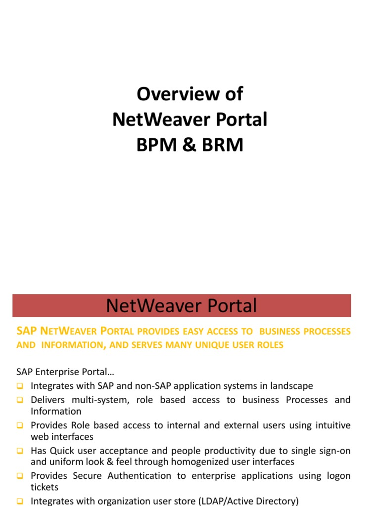 Sap Portal Bpm and Brm | Business Process Management